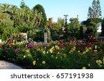 princess grace rose garden ... | Shutterstock . vector #657191938