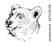 vector black and white bear... | Shutterstock .eps vector #657218158