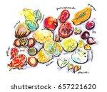 illustration of exotic fruits | Shutterstock . vector #657221620
