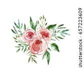 watercolor flowers.  beautiful... | Shutterstock . vector #657223609