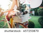 Stock photo beautiful attractive young woman carrying her little cute british shorthair kittens in bicycle 657253870