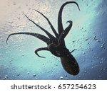 flight of giant octopus   Shutterstock . vector #657254623
