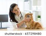 woman veterinarian examining... | Shutterstock . vector #657298480