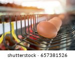 eggs in tray.chicken eggs and...   Shutterstock . vector #657381526