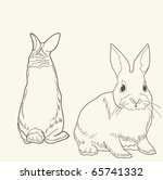 front and rear view of a rabbit ...   Shutterstock .eps vector #65741332