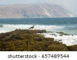 Small photo of Alacran Island - Arica - Chile