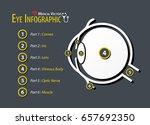 eye infographic . flat design . | Shutterstock .eps vector #657692350