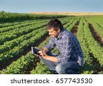 young handsome agriculture... | Shutterstock . vector #657743530