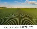 beautiful agricultural... | Shutterstock . vector #657771676