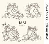 collection of  jar of jam with...   Shutterstock .eps vector #657795940