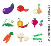 set of vegetables  colorful... | Shutterstock .eps vector #657806299