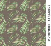 seamless pattern with... | Shutterstock . vector #657820873