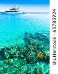 peace coral vacation | Shutterstock . vector #65785924