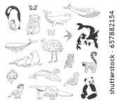 hand drawn animals vector... | Shutterstock .eps vector #657882154