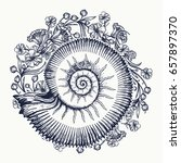 ammonites and art nouveau... | Shutterstock .eps vector #657897370
