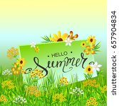 hello summer hand lettering on... | Shutterstock .eps vector #657904834