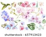 beautiful watercolor set with... | Shutterstock . vector #657913423
