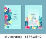 set of  summer exotic and... | Shutterstock .eps vector #657913540