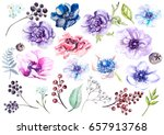 watercolor set with anemones.... | Shutterstock . vector #657913768
