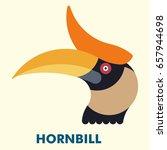 Rhinoceros Hornbill Bird Flat...
