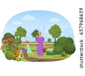 girl watering flowers with the... | Shutterstock . vector #657968659