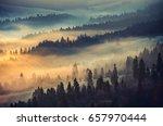 Misty Mountain Forest Landscape Morning - Fine Art prints