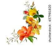 illustration of beautiful... | Shutterstock . vector #657981820