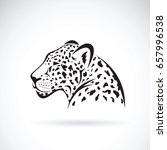 Vector Of A Leopard On White...