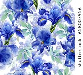 wildflower iris flower pattern... | Shutterstock . vector #658007956