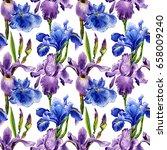 wildflower iris flower pattern...   Shutterstock . vector #658009240