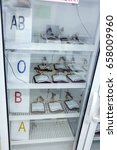 different types of blood stored ... | Shutterstock . vector #658009960