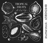 vector hand drawn exotic fruits.... | Shutterstock .eps vector #658042648