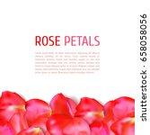 rose petals border | Shutterstock .eps vector #658058056