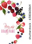 vector vertical fruit banner... | Shutterstock .eps vector #658060864