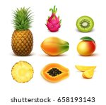 vector set of whole and half... | Shutterstock .eps vector #658193143