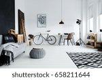 modern spacious studio... | Shutterstock . vector #658211644