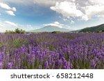mount fuji at lake kawaguchiko. ...   Shutterstock . vector #658212448