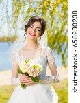 wedding. young beautiful bride... | Shutterstock . vector #658230238