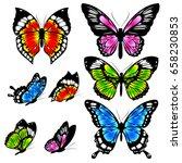 beautiful color butterflies set ... | Shutterstock . vector #658230853