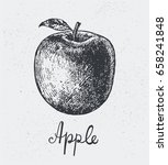 vector hand drawn apple ... | Shutterstock .eps vector #658241848