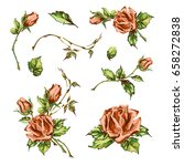 decorative hand drawn roses ... | Shutterstock .eps vector #658272838