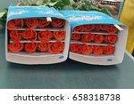 tabacundo  ecuador   circa may...   Shutterstock . vector #658318738