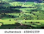 Aerial View Of Paddy Field And...