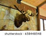 moose head at the wall
