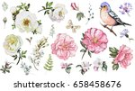 Stock photo set watercolor elements of flower rose collection garden and wild flowers leaves branches 658458676