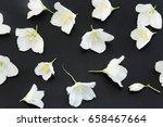 jasmine flowers on a black... | Shutterstock . vector #658467664
