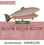 trout health benefits. vector... | Shutterstock .eps vector #658482238
