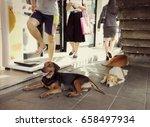 bangkok thailand   june 12 2017 ... | Shutterstock . vector #658497934