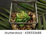 wedding rings on green flower... | Shutterstock . vector #658533688