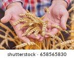 male hand holding a golden... | Shutterstock . vector #658565830